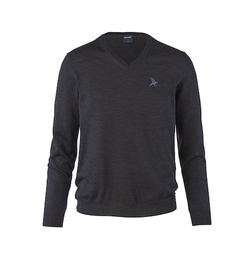 Black Falcon V-Neck Pullover Strick